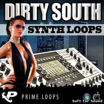 PL-Dirty_South_Synth_Loops.jpg